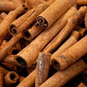 Écorces de cannelle (cortex cinnamomum)