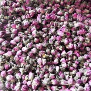 Boutons de rose (flores rosae)